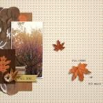 fall-colors-magical.jpg